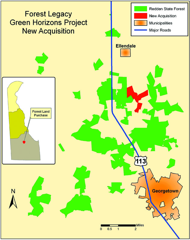 Delaware buys 375 forested acres in Sus for $2.7M | Cape Gazette on