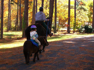 The Redden Ride And Walk Scheduled For Sunday Oct 16 Will Benefit Southern Delaware Therapeutic Recreational Horseback Riding An Organization Which