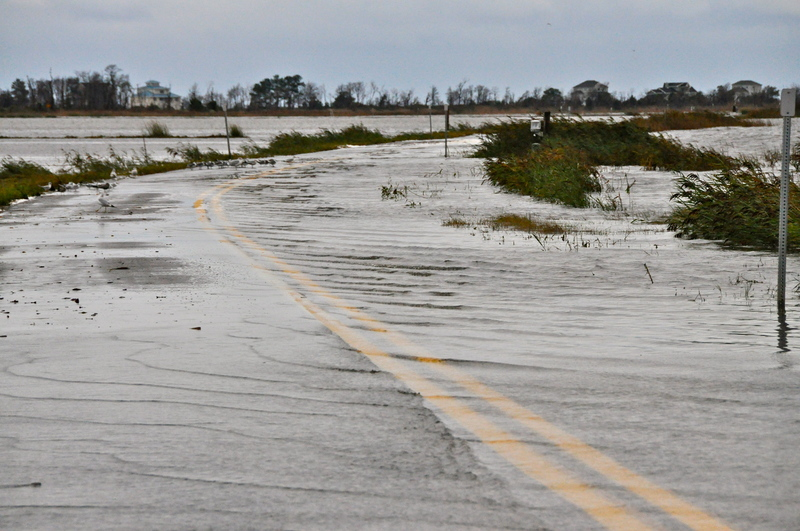 Even At Low Tide Prime Hook Road Is Flooded And Not Safe For Page By Ron Macarthur