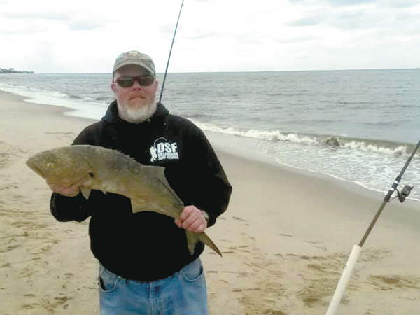 Early summer fish already showing up cape gazette for Island beach state park fishing