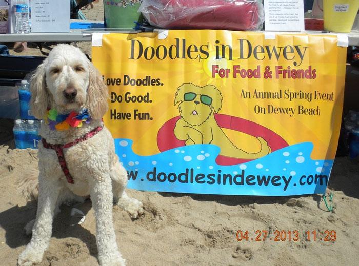 Heres Whats Happening This Weekend In Coastal Delaware