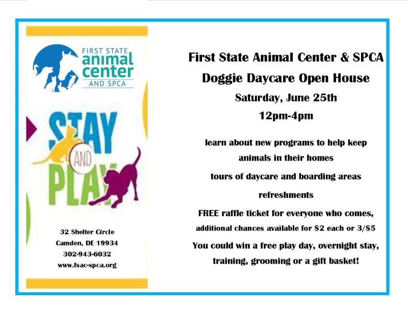 doggie daycare open house and ribbon cutting