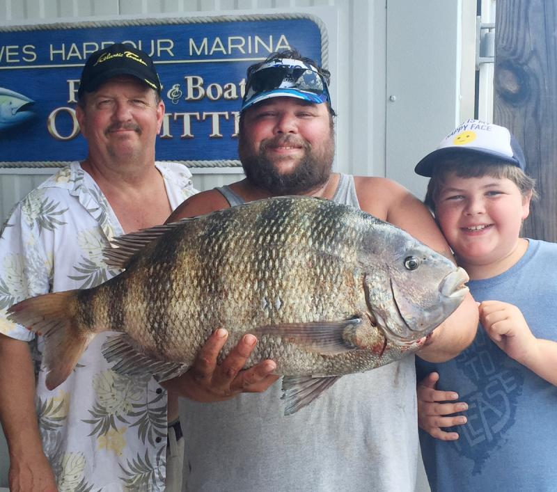 The delaware bay is not dead cape gazette for Lewes harbor marina fishing report
