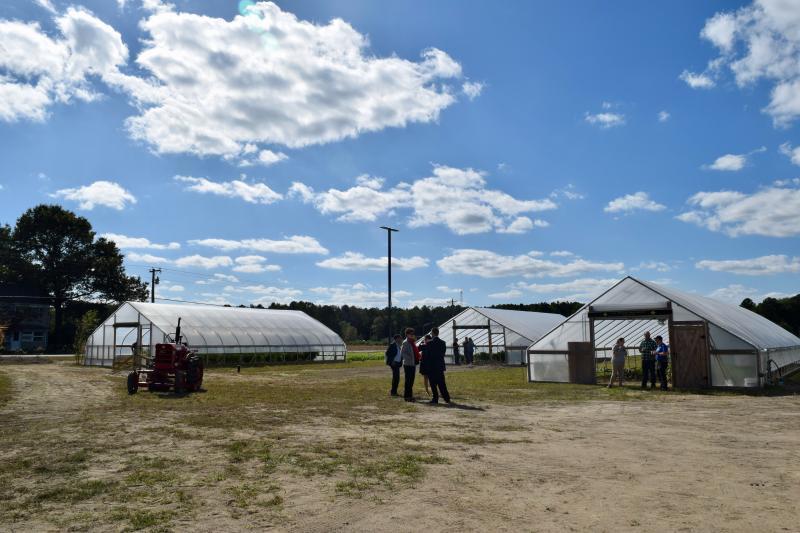 Delaware Tech Prepares Future Generation Of Farmers Cape Gazette
