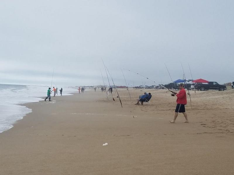 Cape gazette news covering delaware 39 s cape region for Rehoboth beach fishing