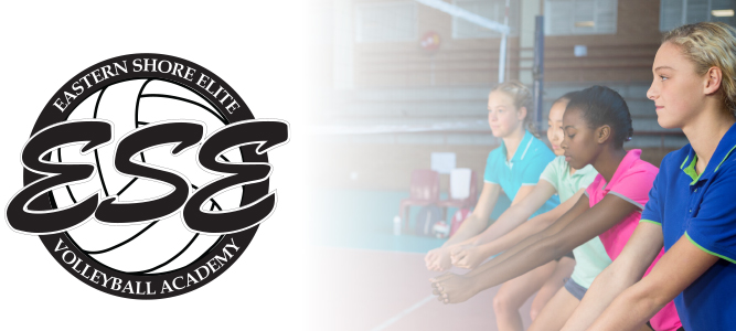 ESEVA, volleyball, youth volleyball, volleyball instruction