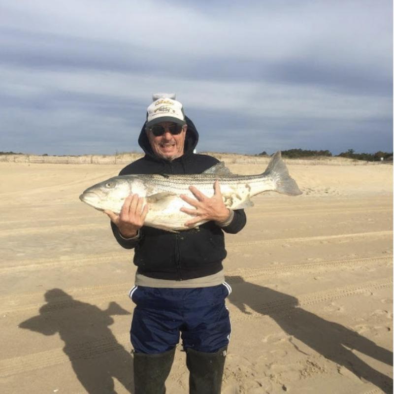 Local fishing has come alive cape gazette for Cape henlopen fishing report