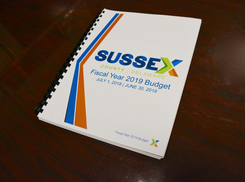 Councilmanic grants help support Sussex nonprofits | Cape