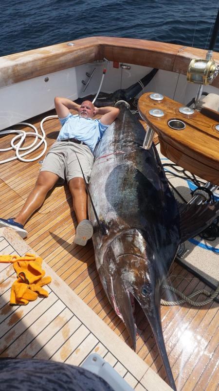 Blu Marlin hook up