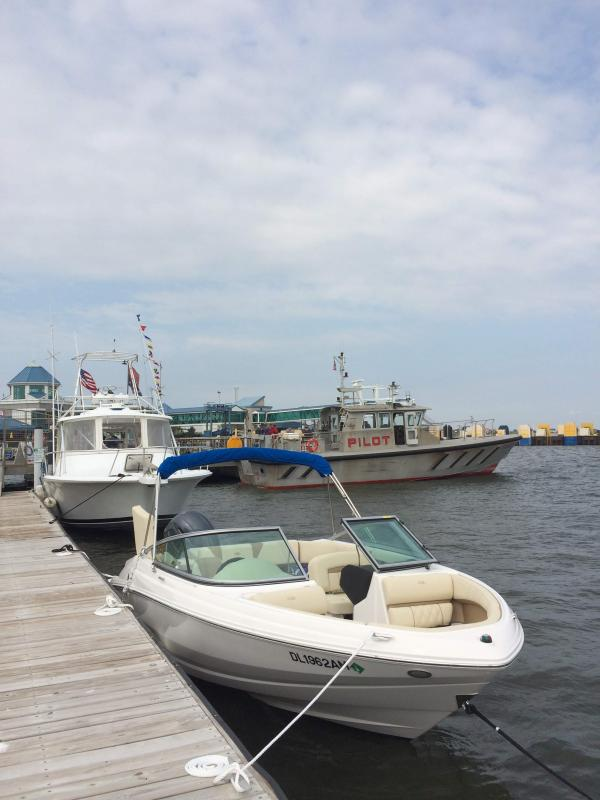 Freedom Boat Club- Open House at the Ferry Terminal | Cape Gazette