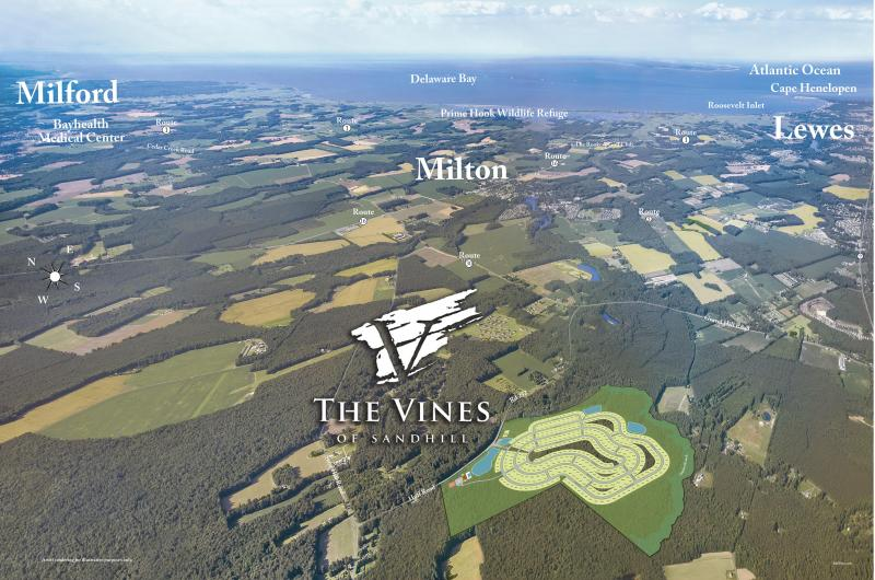 The Vines of Sandhill, New Community, Amenities