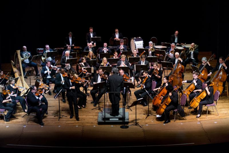 Mid-Atlantic Symphony Orchestra to perform in Ocean View Nov