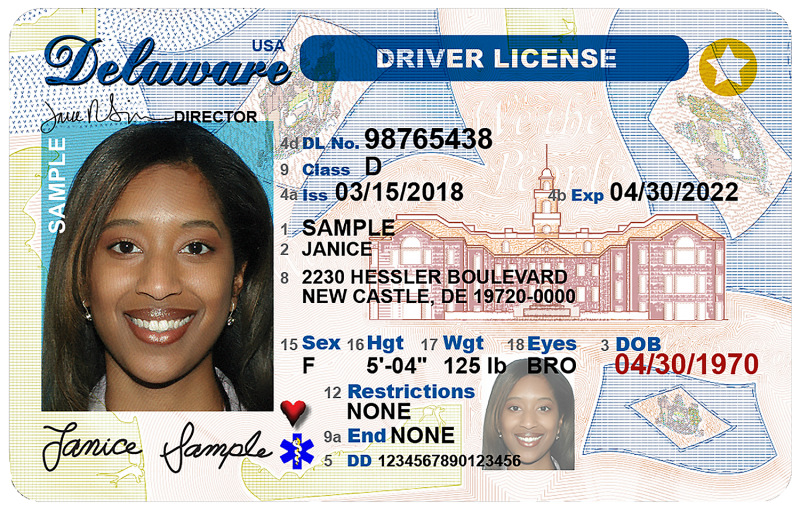 Class 5 drivers license