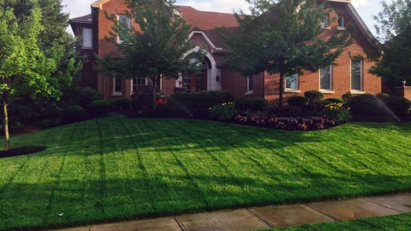 Why Should You Hire A Professional Lawn Care Company