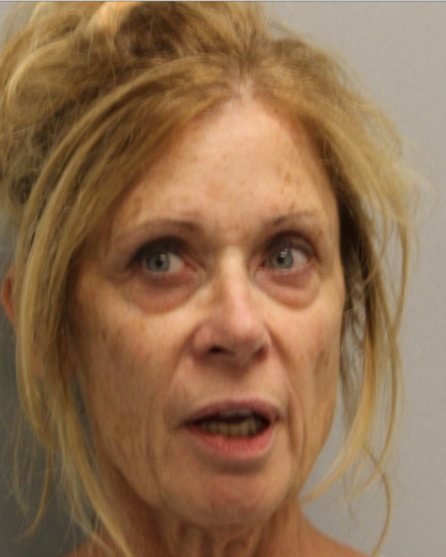 Lewes woman faces shoplifting charge, 6th DUI