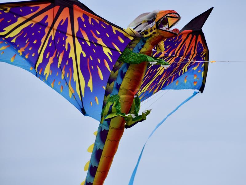 Kite festival postponed until 2022