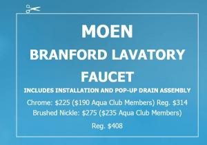 Moen, Bathroom, Faucet, Chesapeake Plumbing and Heating, Branford, Remodeling