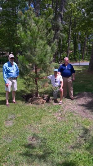 Photo of Mayor David Lyons and two tree committee members who helped plant tree in honor of Arbor Day